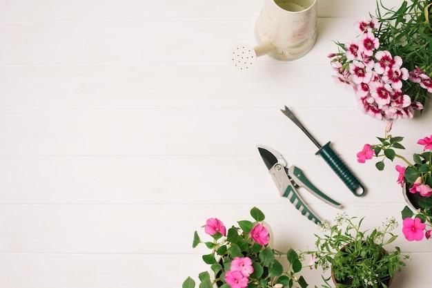 Arrangement aus blühenden blumen mit gartenschere
