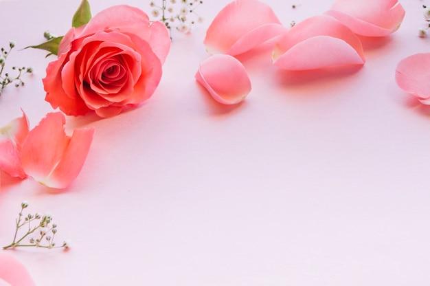 Arrangiert sanfte blumen auf rosa