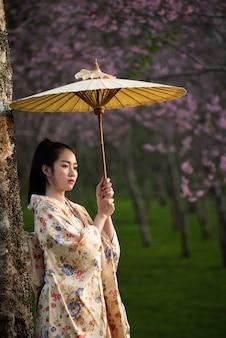 Asiatin, die traditionellen japanischen kimono mit kirschblüte trägt