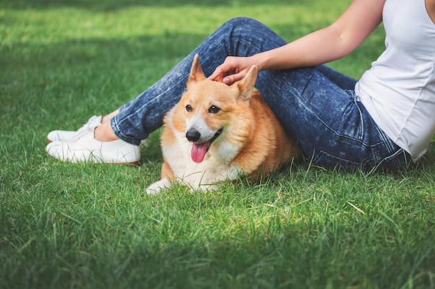 Asiatin mit waliser-corgi pembroke-hund