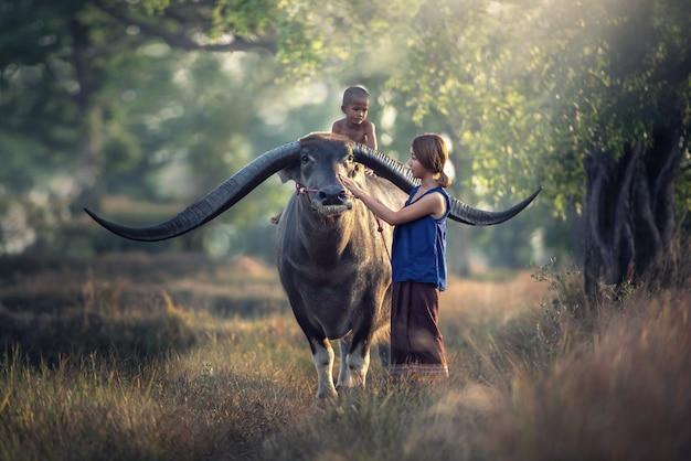Asiatinlandwirt mit dem sohn, der einen büffel in der feldlandschaft von thailand reitet