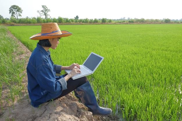 Asiatische bäuerin, die auf einer grünen reisfarm sitzt und einen intelligenten laptop-notebook-computer verwendet
