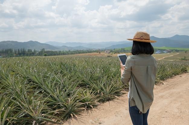 Asiatische bäuerin sehen ananaswachstum in der farm. agrarindustrie, landwirtschaftsgeschäftskonzept. innovationstechnologie für smart farm system, bauernberuf. bauer hält tablette im feld
