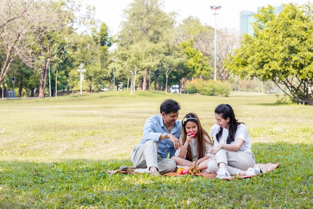 Asiatische familie auf einem picknick
