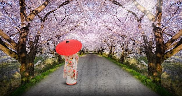 Asiatische frau, die japanischen traditionellen kimono trägt