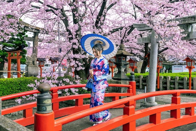 Asiatische frau, die traditionellen japanischen kimono und kirschblüte im frühjahr, kyoto-tempel in japan trägt.
