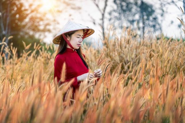 Asiatische frau, die vietnamkultur traditionell im afrikanischen brunnenblumenfeld trägt.