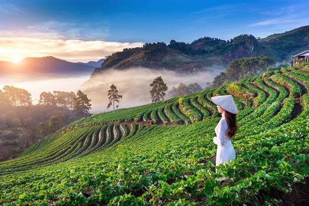 Asiatische frau, die vietnamkultur traditionell im erdbeergarten auf doi ang khang, chiang mai, thailand trägt.
