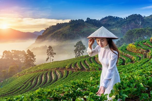 Asiatische frau, die vietnamkultur traditionell im erdbeergarten bei sonnenaufgang trägt.