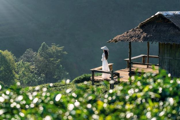 Asiatische frau, die vietnamkultur traditionell im grünen teefeld auf doi ang khang, chiang mai, thailand trägt