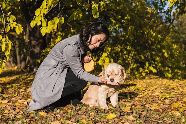 Asiatische frau füttert ihren cockerspaniel im herbstpark