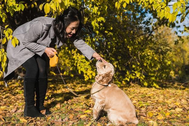 Asiatische frau spielt mit hund im herbstpark. gefallene blätter im hintergrund.