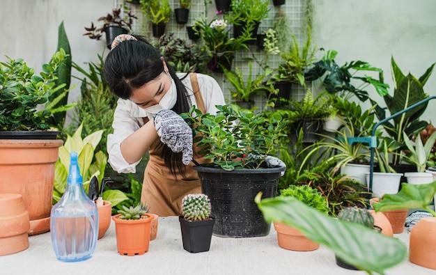 Asiatische gärtnerin mit gesichtsmaske und schürze mit schaufel, um zimmerpflanzen und kakteen zu verpflanzen