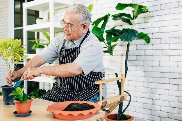 Asiatische großväter im ruhestand lieben es, sich um die pflanzen zu kümmern, indem sie zweige von pflanzen schneiden