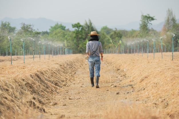 Asiatische junge bäuerin im hut stehend und in feldfrau zur inspektion im landwirtschaftlichen garten gehend. pflanzenwachstum. konzept ökologie, transport, saubere luft, lebensmittel, bioprodukt.
