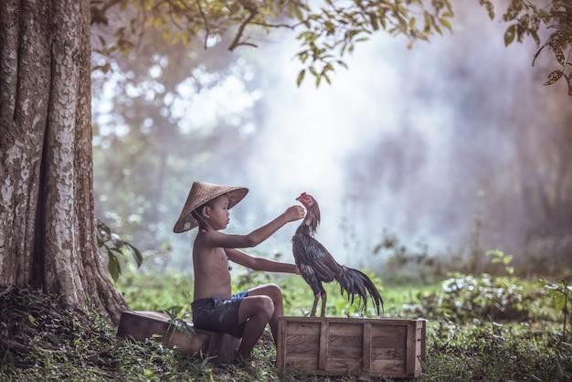Asiatische jungen in der landschaft mit dem kämpfenden hahn, thailand