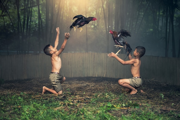 Asiatische jungen in der landschaft mit hahnkampfspielen
