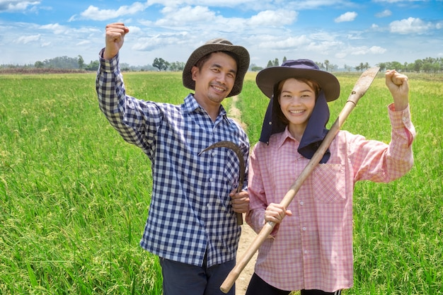 Asiatische landwirte verbinden das halten von werkzeugen im reisbauernhof bei thailand