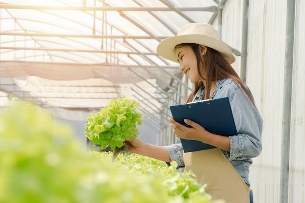 Asiatische landwirtfrau, die salat des rohen gemüses für kontrollqualität im wasserkulturbauernhofsystem im gewächshaus hält.