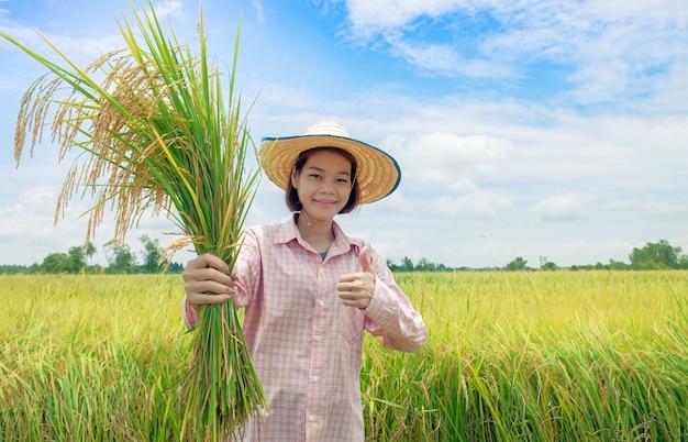 Asiatische landwirtfrauen, die hüte und rosa gestreifte hemden halten einen goldenen paddy tragen und den daumen für gute produktivität glücklich angehoben haben