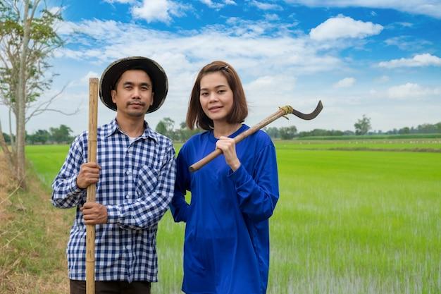 Asiatische landwirtpaare halten werkzeuge im reisbauernhof bei thailand