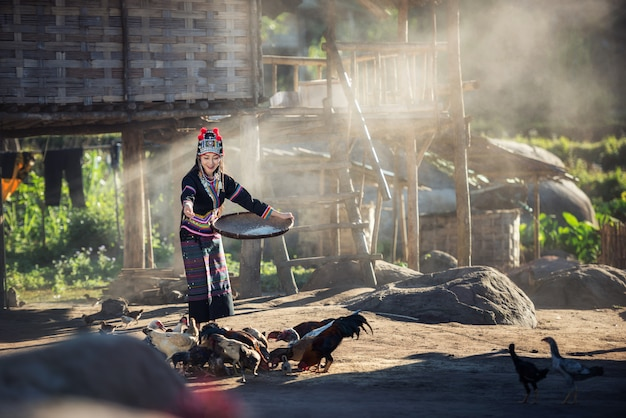 Asiatische mädchen, die hühner an laos-landschaft einziehen