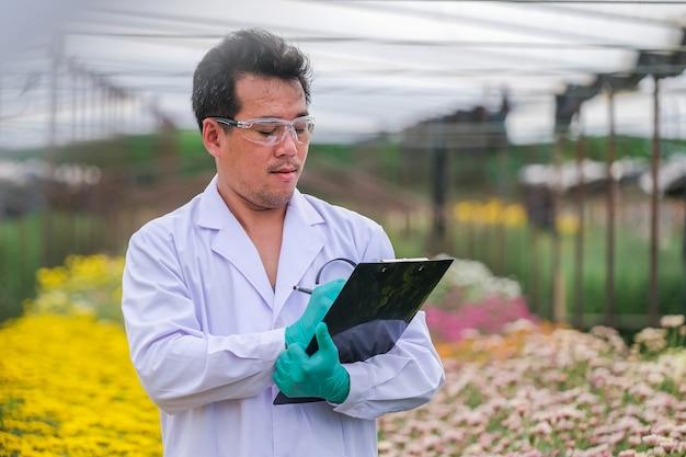 Asiatische männliche forscher und chrysanthemendatenaufnahme im garten