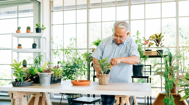 Asiatische männliche senioren im ruhestand lieben es, sich um die pflanzen zu kümmern, indem sie den boden schöpfen, um sich auf das pflanzen von bäumen im innengarten vorzubereiten. ruhestandsaktivitäten.