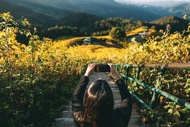 Asiatische reisende, die foto mit handy auf mexikanischem sonnenblumenfeld bei sonnenaufgang in mae hong son thailand nimmt