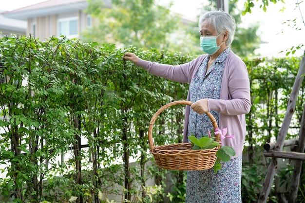 Asiatische seniorin oder ältere alte dame, die sich zu hause um die gartenarbeit kümmert, hobby zum entspannen und trainieren mit freude.