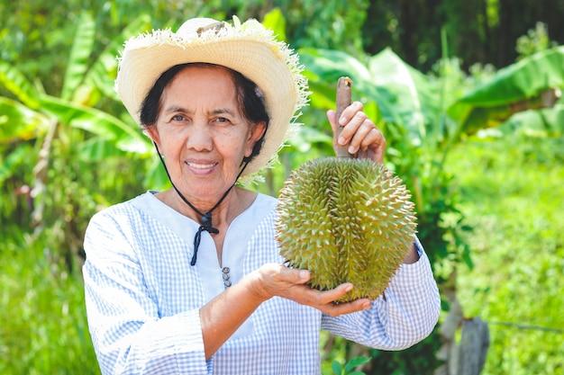 Asiatische weibliche ältere landwirte, welche die hüte, 1 durianfrüchte halten tragen