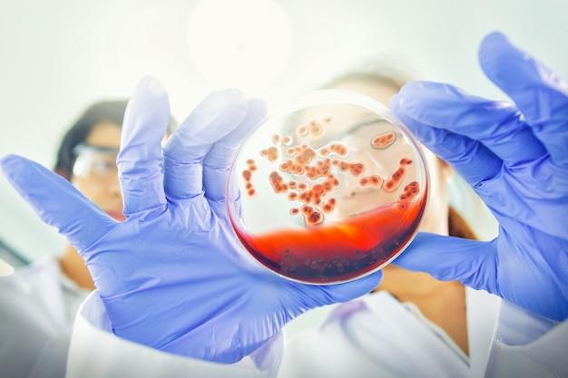 Asiatische wissenschaftler arbeiten am beispiel krankheit labor