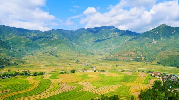 Asiatischer berg mit grüner landschaft der reisfeldlandwirtschaft in der asiatischen farm. plantage grüner reis terrasse feld ökologie. vietnam grün gelbes umweltökologiesystem.