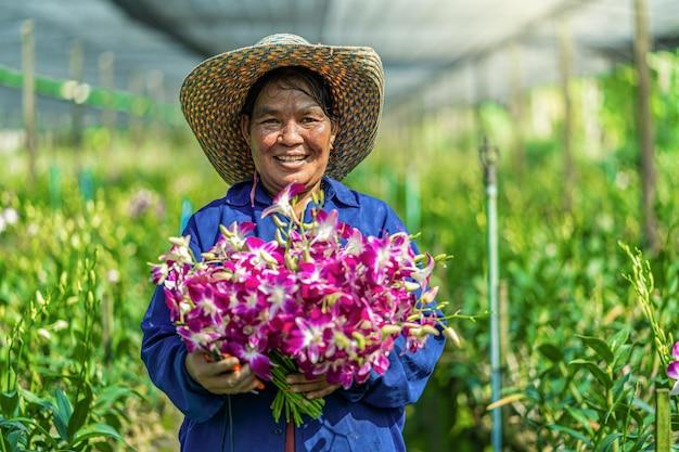Asiatischer gärtner des porträts des orchideengartenarbeitbauernhofes