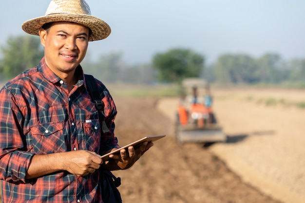 Asiatischer junger landwirt, der auf dem gebiet des tabakbaums mit einer tablette arbeitet