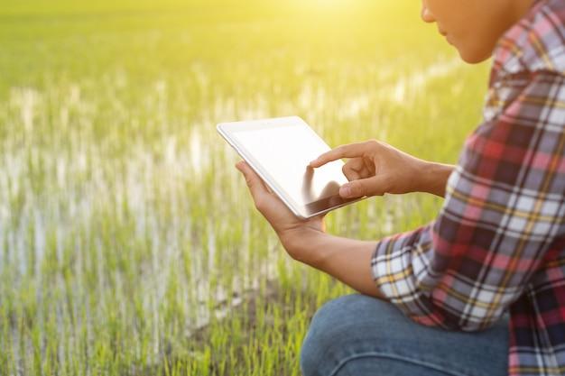 Asiatischer junger landwirt, der tablette am grünen reisfeld verwendet