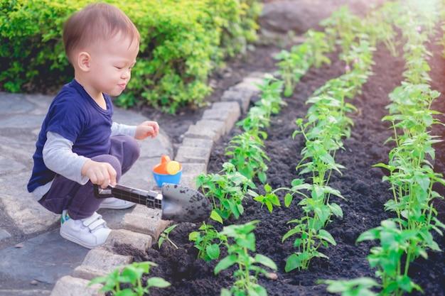 Asiatischer kleinkindjunge, der jungen baum auf schwarzem boden im grünen garten pflanzt