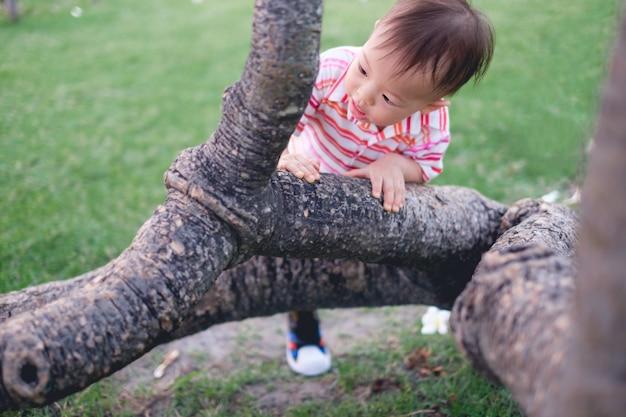 Asiatischer kleinkindjunge mit 18 monaten / 1 jährigen, der den spaß versucht, auf dem baum im park auf natur zu klettern hat