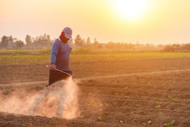 Asiatischer landwirt, der auf dem gebiet arbeitet und düngemittel sprüht