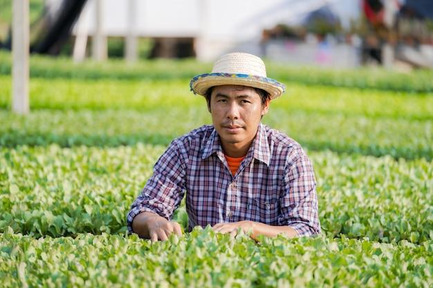 Asiatischer landwirt im hut junge sämlinge in seinem bauernhof im gemüsegarten überprüfend