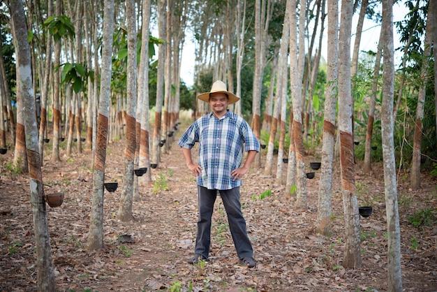 Asiatischer landwirt landwirt glücklich auf einer gummibaumplantage mit gummibaum in reihe naturlatex ist eine landwirtschaft, die naturkautschuk in weißer milchfarbe für die industrie in thailand erntet