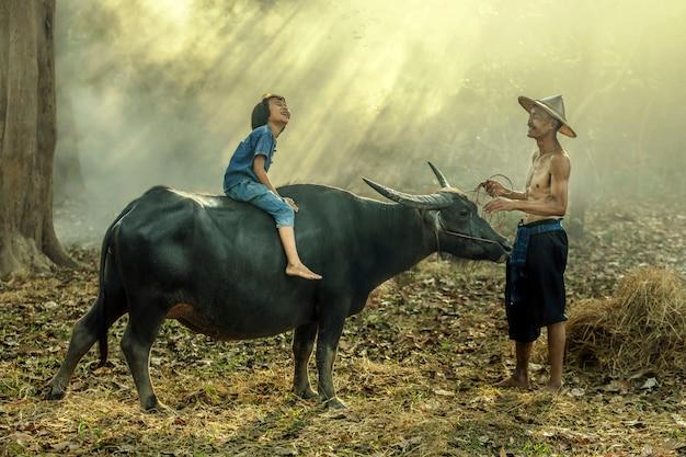 Asiatischer landwirt und seine tochter reiten auf einen büffel, der in sakonnakhon, thailand glücklich ist.