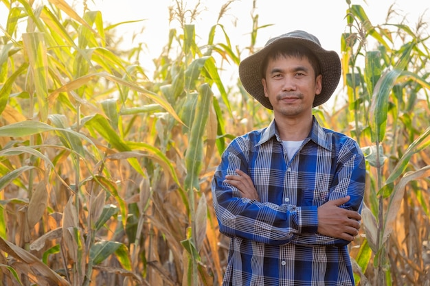Asiatischer landwirtmann, der im maisbauernhof bei thailand steht