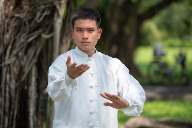 Asiatischer mann, der morgens mit tai chi am park, chinesische kampfkünste ausarbeitet