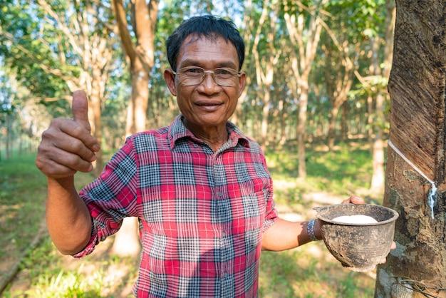 Asiatischer mann senior farmer, asiatischer mann bauer in gummiplantagen