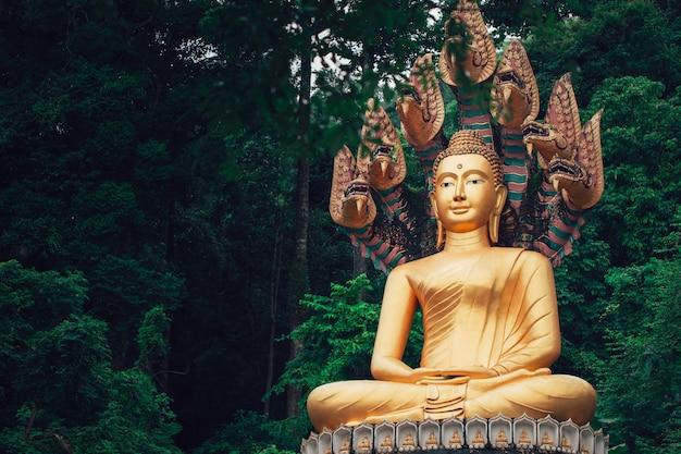 Asiatischer thailändischer goldener buddha, der mit naka-schlange im wald sitzt