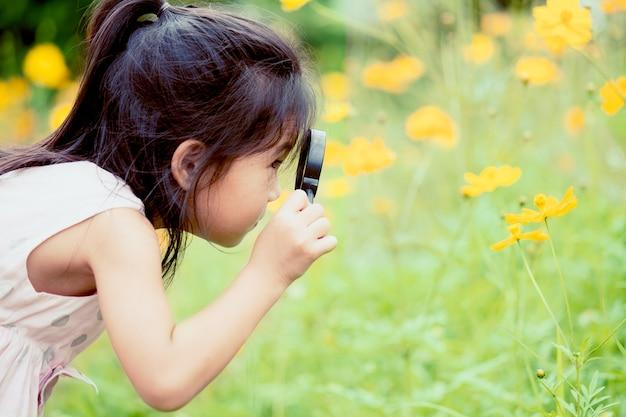 Asiatisches kleines kindermädchen, das durch ein vergrößerungsglas auf kosmosblume im garten schaut