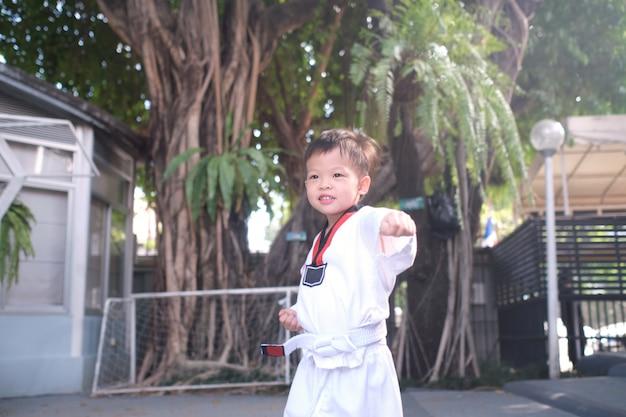 Asiatisches kleinkindjungenkind, das in kämpfender aktion auf natur, taekwondo-klasse für kleinkind aufwirft