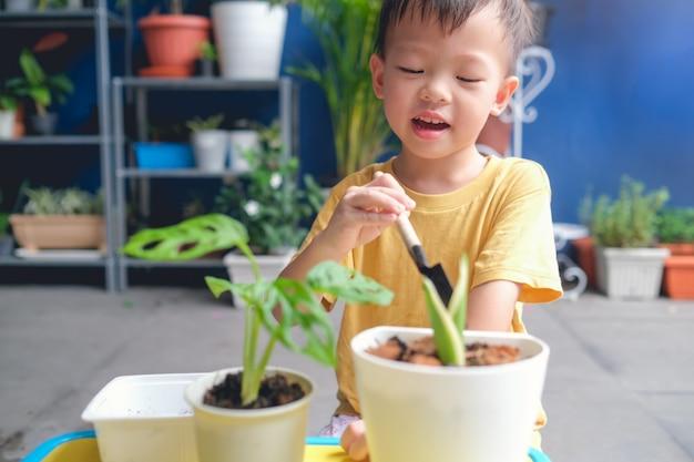 Asiatisches kleinkindjungenkind, das kleine gartenschaufel hält, die jungen baum auf boden zu hause innengarten pflanzt