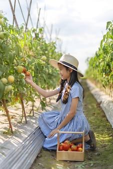 Asiatisches süßes kleines mädchen mit roten tomaten